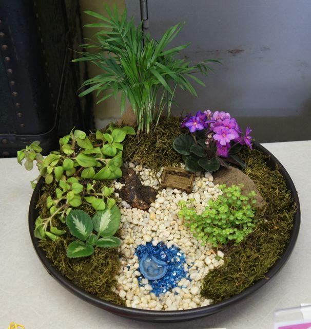 WAVS 2013 Show Dish Garden Design